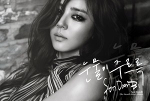 PRE-ORDER SON DAM BI'S MINI ALBUM VOL. 4